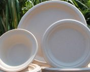 A photo of molded fiber plates and bowls in front of greenery