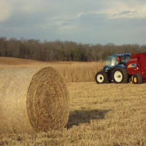 A bale of switchgrass in front of a tractor with a baler
